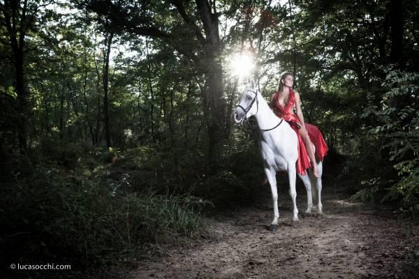 Modella in abito rosso su cavallo purosangue bianco